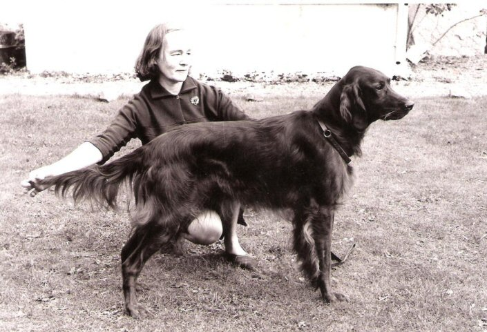 C  Maureen McKeever circ 1964(15)