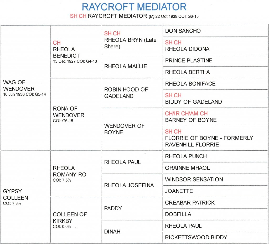 Raycroft Mediator peD