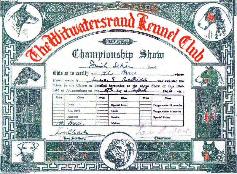 WKC Certificate( 10 )